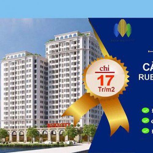 4 Điều cần biết khi mua căn hộ chung cư Ruby city ct3