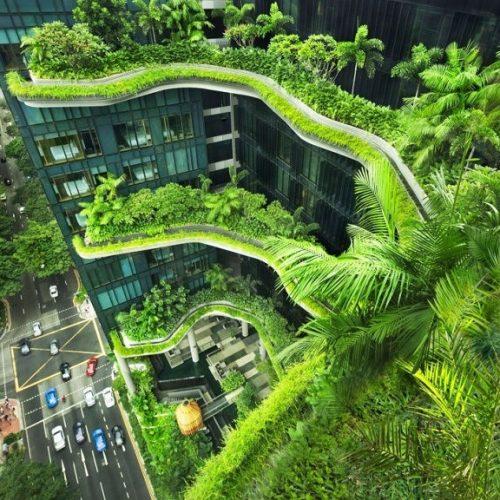 Kiến trúc xanh là gì? Những lợi ích nổi bật của kiến trúc xanh
